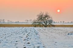 Sonnenuntergang am Moosgraben bei -8°C -- Spaziergang bei -8°C im Norden von Maendlfeld