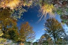 Baumwipfelpfad -- Verkehrte Welt Baumwipfelpfad im Nationalpark bayerischer Wald