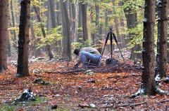 -- Erich Obster im verscheiten, herbstlichen Wald