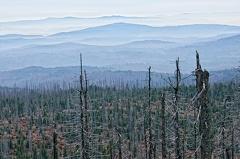 2013 11 01 172817  WBO0242 44 1000 -- Blick auf den bayerischen Wald