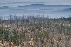 Der Lusen im Bayrischen Wald -- Der Lusen im Bayrischen Wald