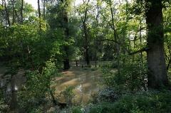 Hochwasser 2013 -- Hochwasser 2013